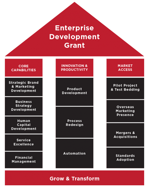 enterprise-development-grant-edg-diagram